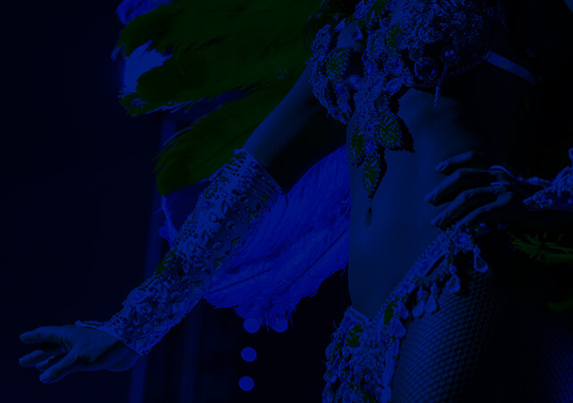 Carnaval Vitória 2015