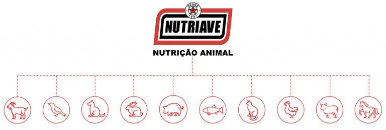 Case Alinutri - grupo de animais - Aldeia Marketing de Conteúdo
